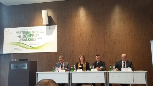 "Regional workshop on ""How to enhance the use of bioenergy in the Balkans"""
