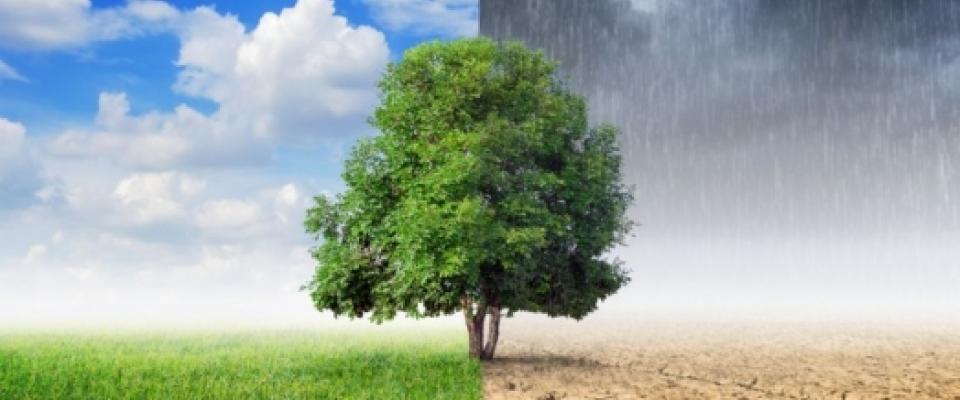 Pariski sporazum o klimi stupa na snagu za 30 dana